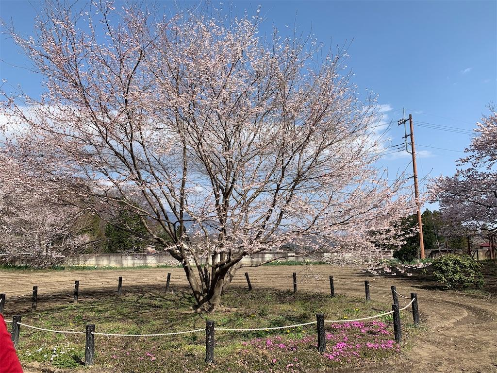 f:id:tsururiko:20210327163211j:image