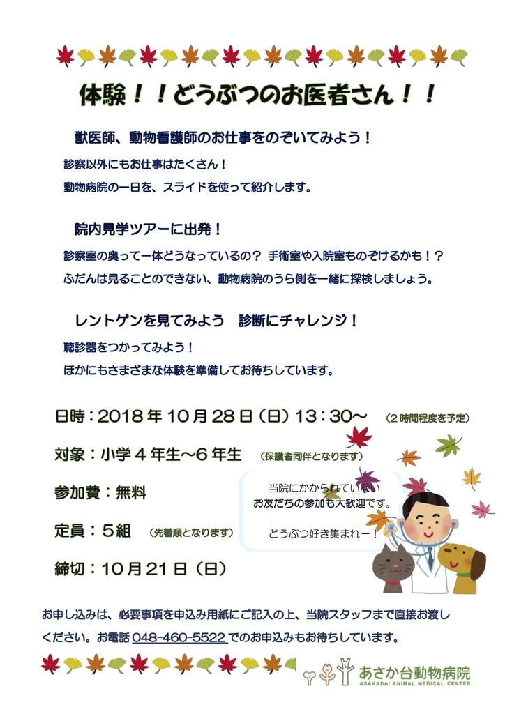 f:id:tsuruse_ah:20181011190907j:plain