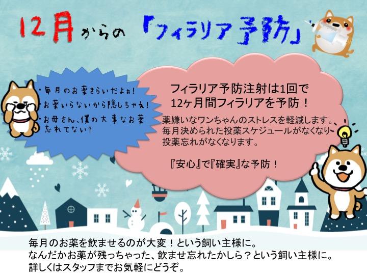 f:id:tsuruse_ah:20181130231833j:plain