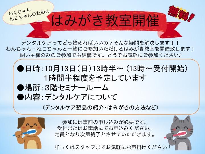 f:id:tsuruse_ah:20190915112122j:plain