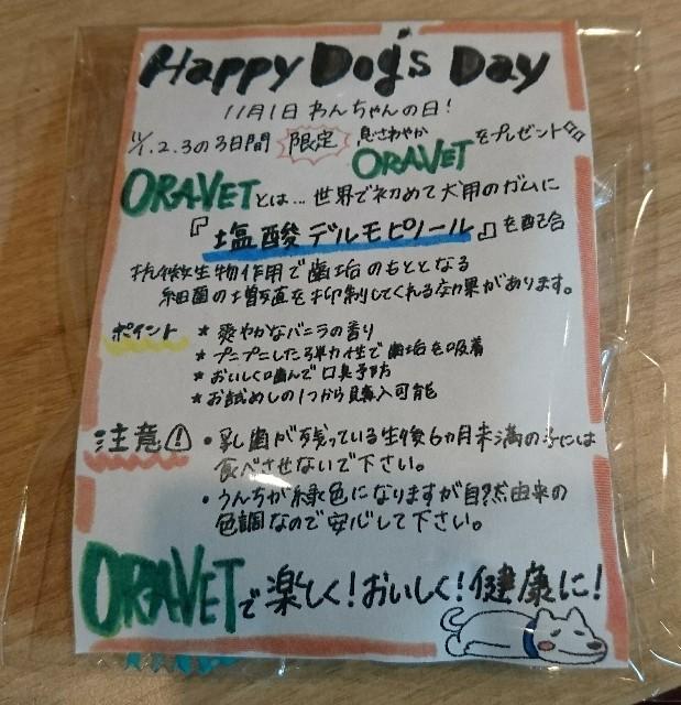 f:id:tsuruse_ah:20191102195120j:image