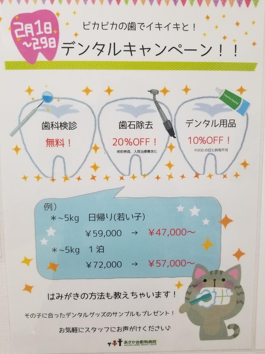 f:id:tsuruse_ah:20200211130413j:plain