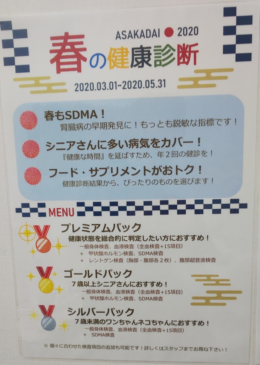 f:id:tsuruse_ah:20200229204100j:plain