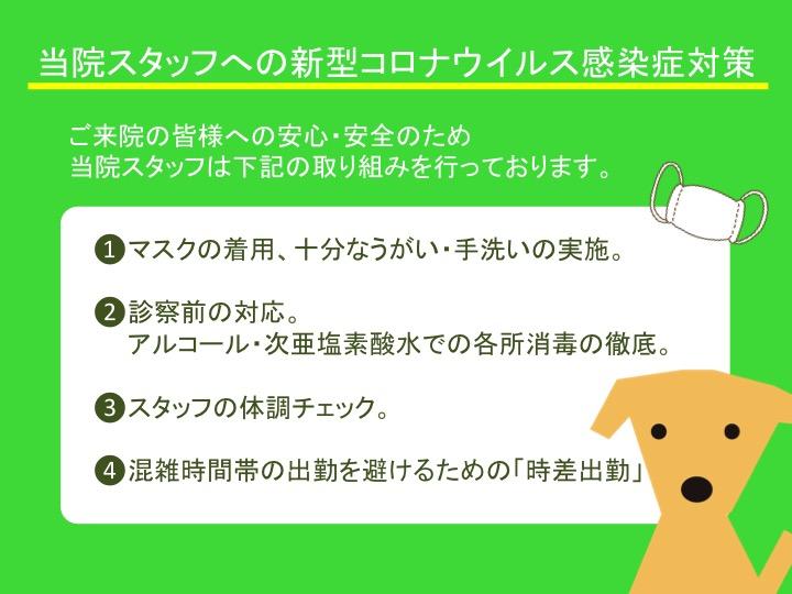 f:id:tsuruse_ah:20200327084427j:plain