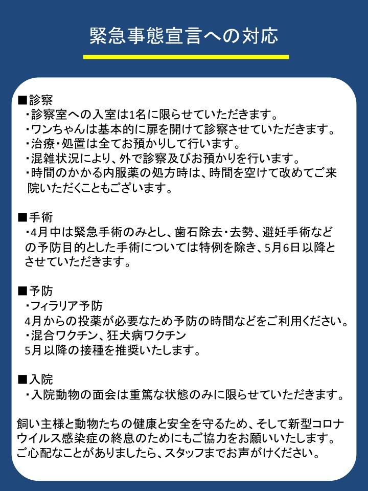 f:id:tsuruse_ah:20200409125643j:plain