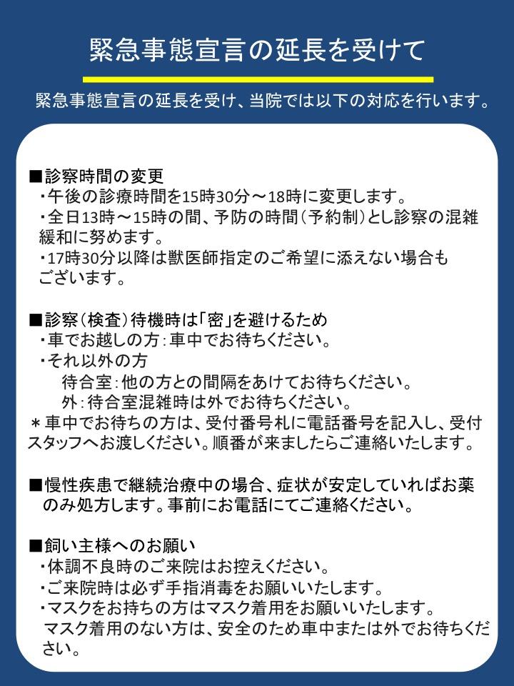 f:id:tsuruse_ah:20200507141724j:plain