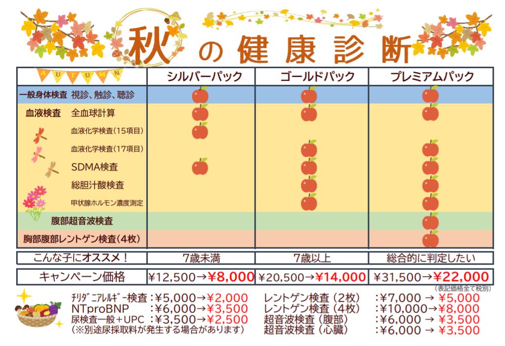 f:id:tsuruse_ah:20201010222714p:plain