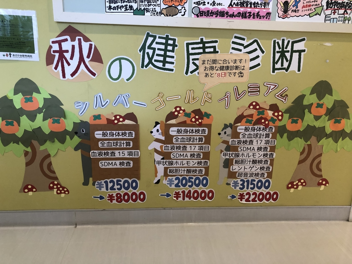 f:id:tsuruse_ah:20201123193011j:plain