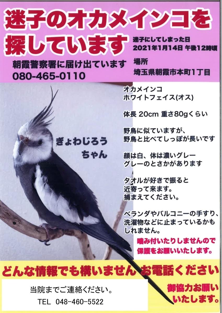 f:id:tsuruse_ah:20210120220212j:plain