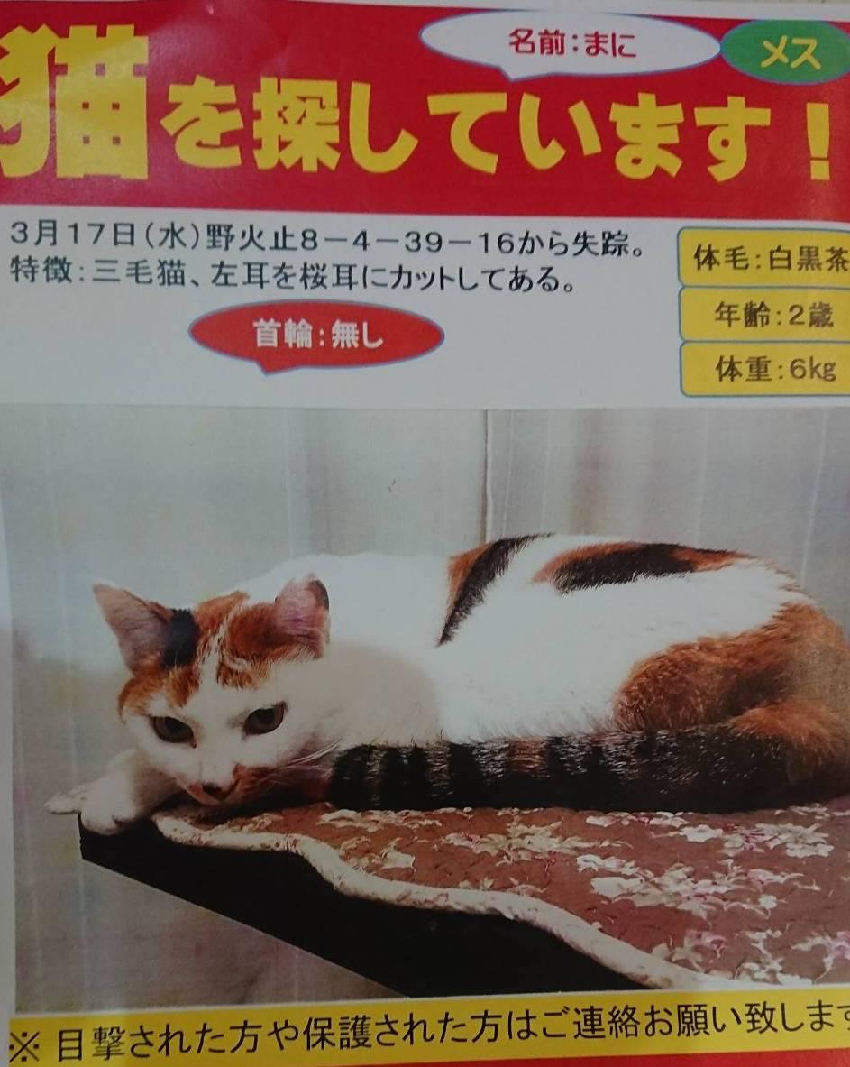 f:id:tsuruse_ah:20210324093923j:plain