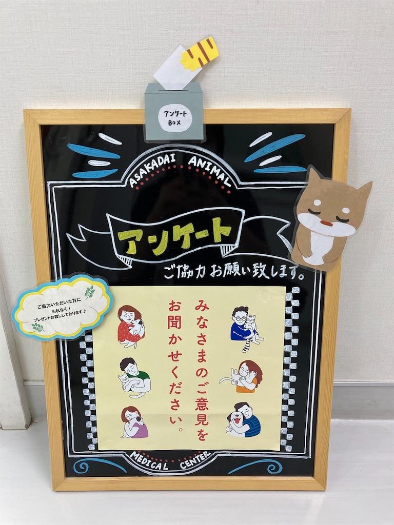 f:id:tsuruse_ah:20210721175526j:image