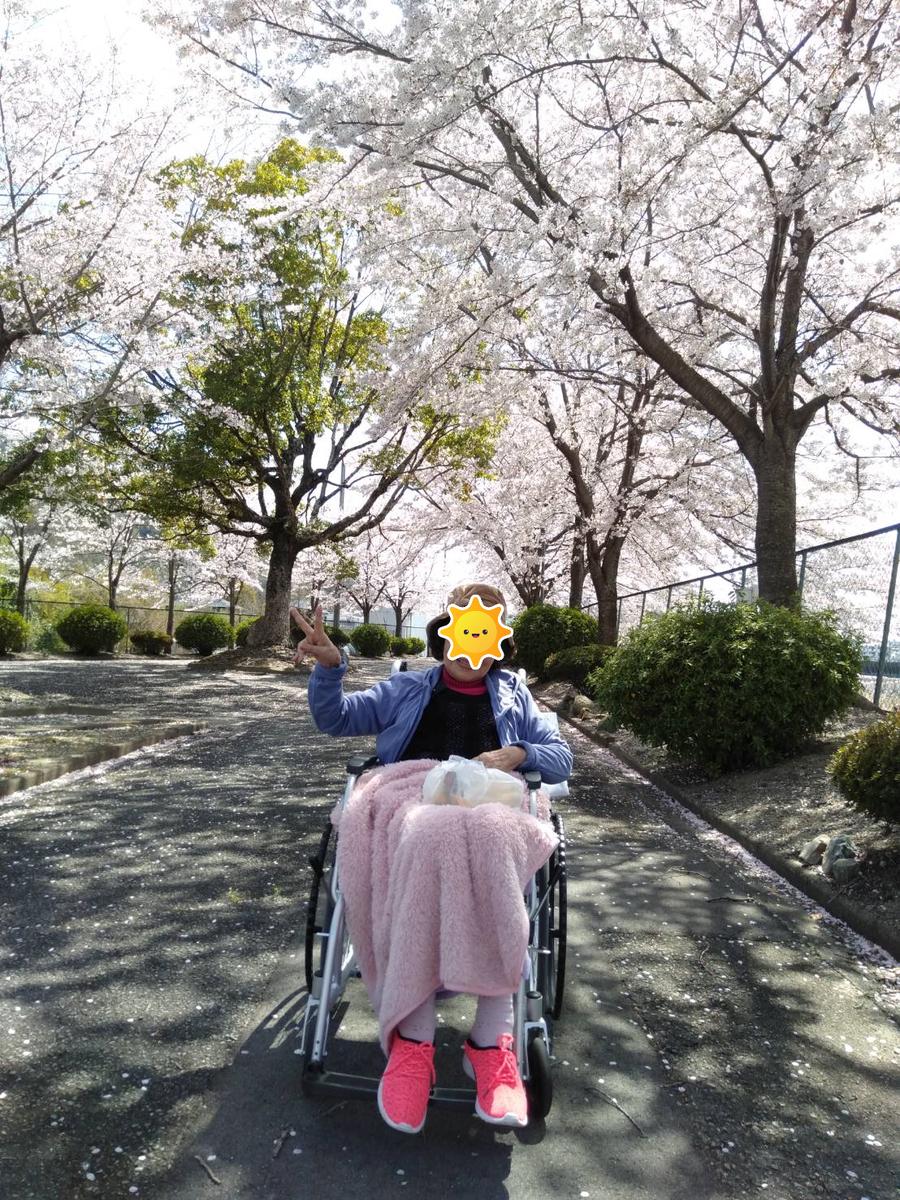f:id:tsusa-sora:20190410095432p:plain