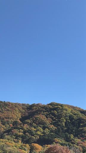 f:id:tsusa-sora:20191124112945p:image