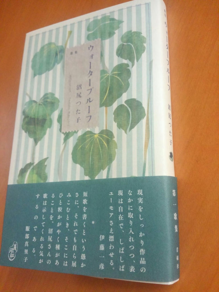 f:id:tsutanuma:20161008233204j:plain