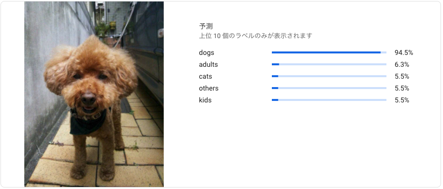 f:id:tsutoutakehara:20200424104246p:plain:w500