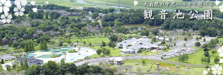 公園 観音 池