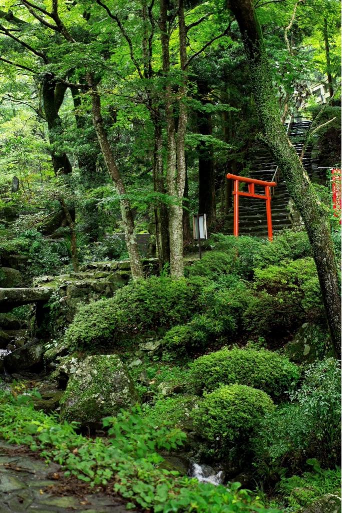 f:id:tsutsumi000lifework:20161125134555j:image