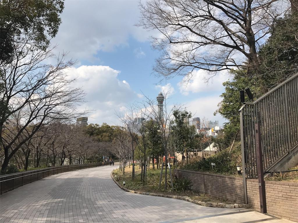f:id:tsutsumi_223:20170323134115j:image