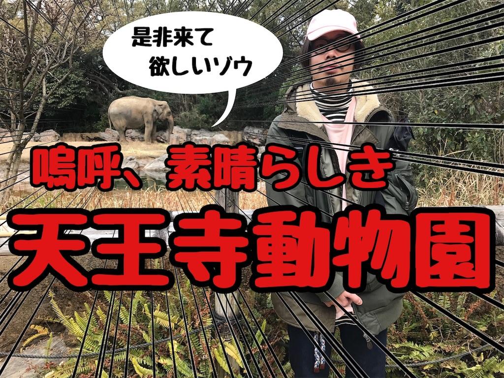 f:id:tsutsumi_223:20170403205016j:image