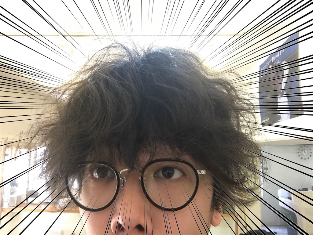 f:id:tsutsumi_223:20170614222150j:image