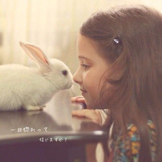 f:id:tsuyajuku0922:20161119205137j:plain