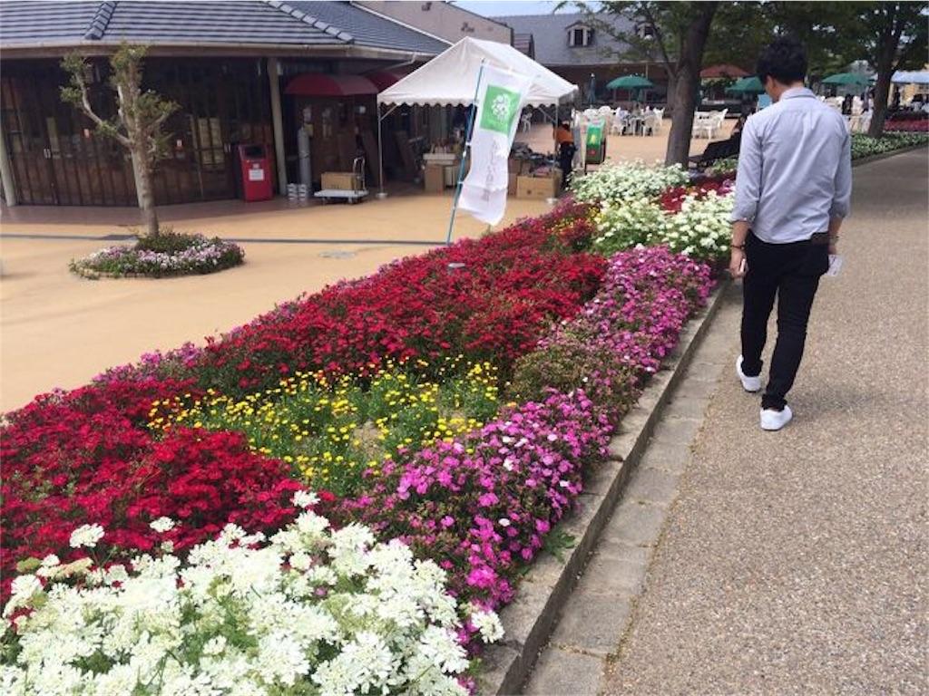 f:id:tsuyoooshi:20190319133842j:image