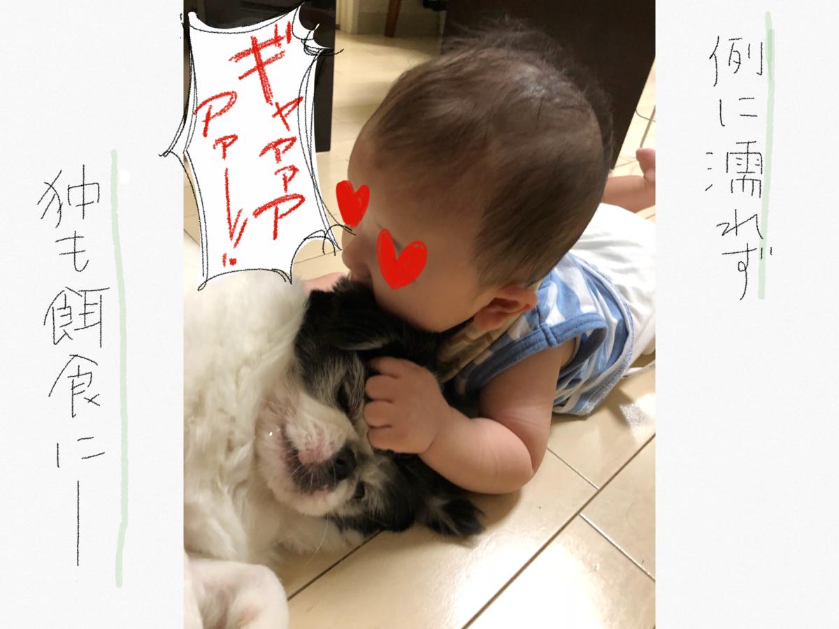 f:id:tsuzuriya:20191119110557p:plain