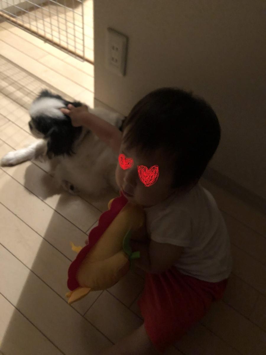 f:id:tsuzuriya:20191119111207j:plain