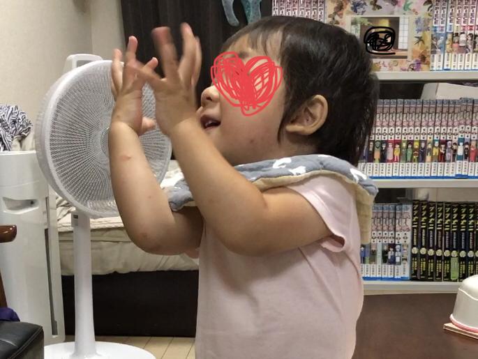 f:id:tsuzuriya:20191126165153j:plain