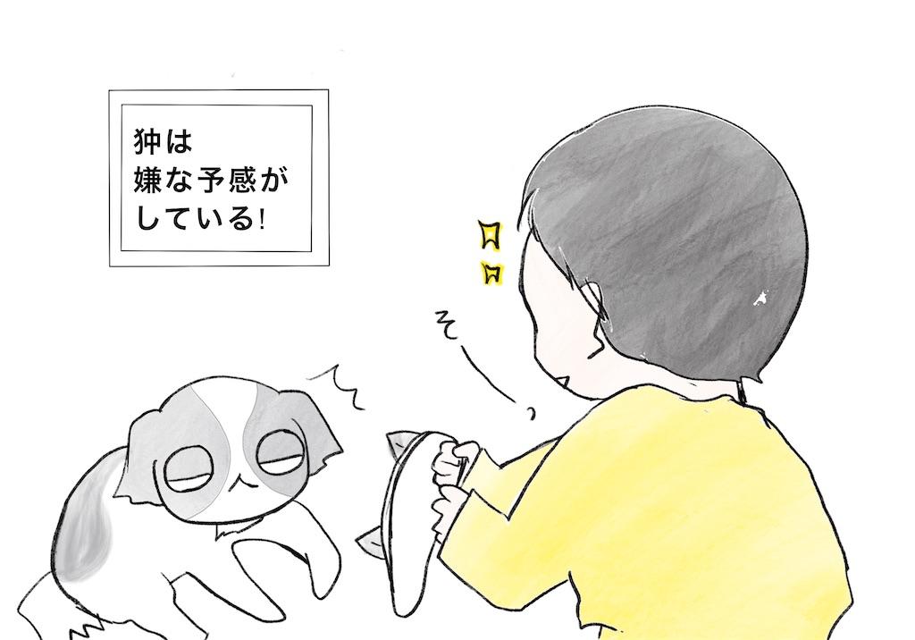 f:id:tsuzuriya:20200221150053j:image