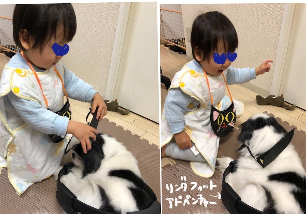 f:id:tsuzuriya:20200221152453j:image