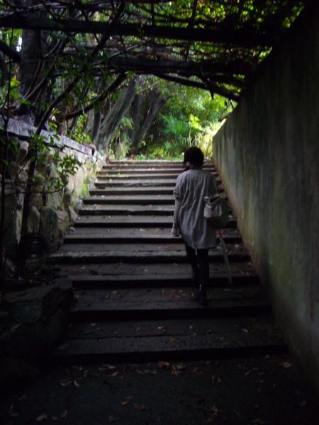 L /  kyoto-yoshidayama