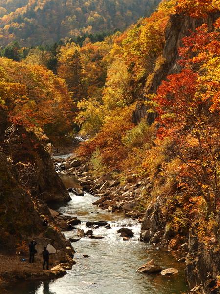 定山渓二見吊橋からの紅葉