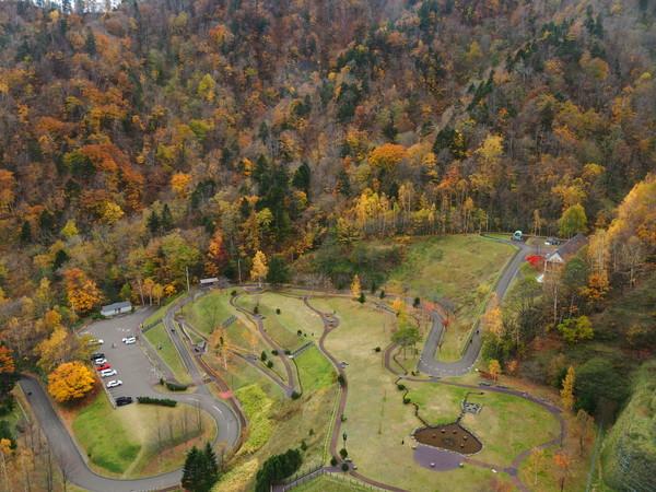 定山渓ダムの紅葉