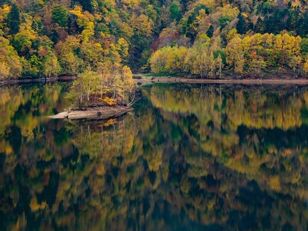 さっぽろ湖の紅葉