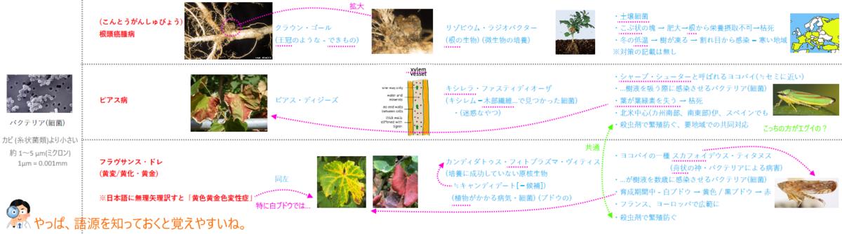f:id:ttrd80:20210309020117p:plain