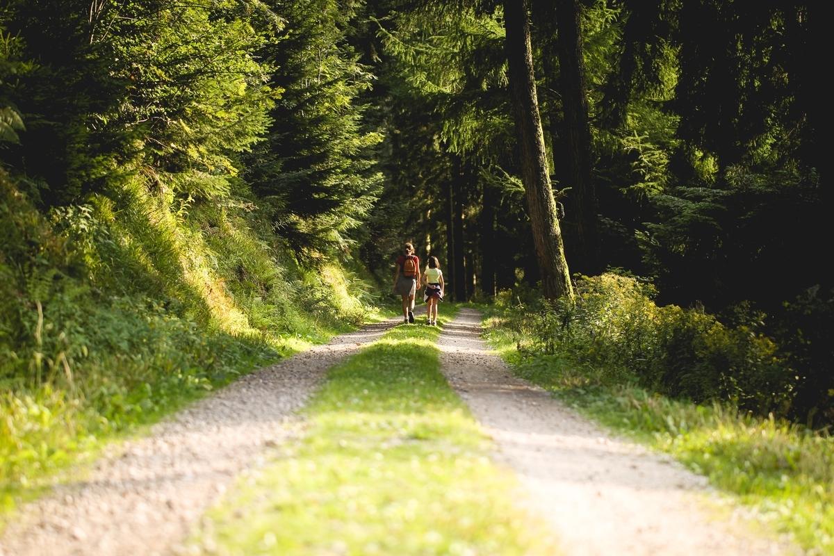 【散歩】散歩するのって楽しいし、気分転換にぴったりという話