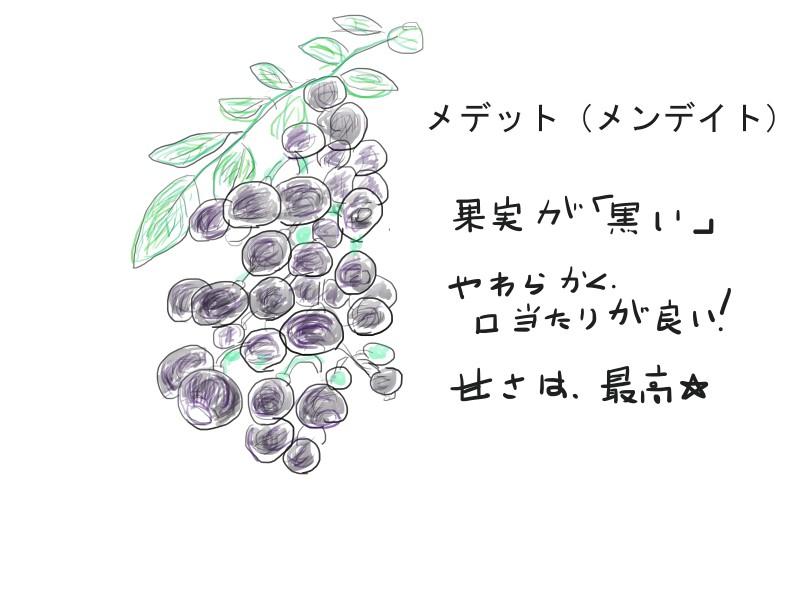f:id:tty-kanzaki:20181230234425j:plain
