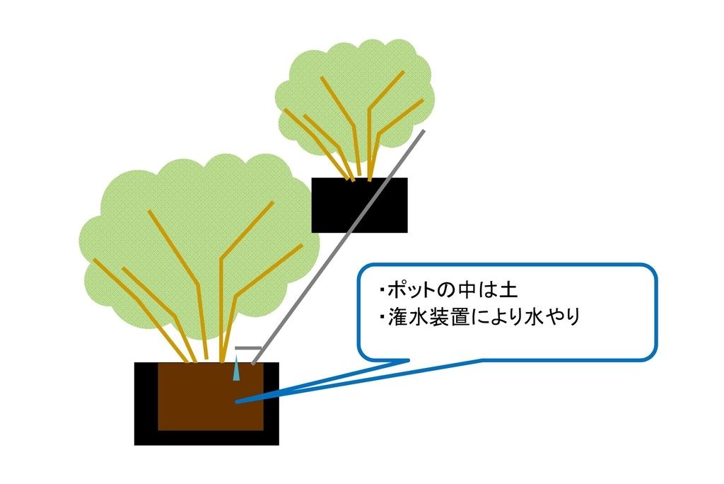 f:id:tty-kanzaki:20190205115600j:plain