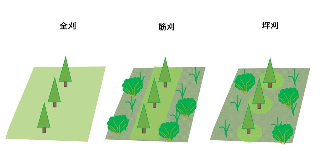 f:id:tty-kanzaki:20190311112403j:plain