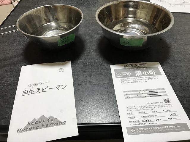 f:id:tty-kanzaki:20190325003455j:plain