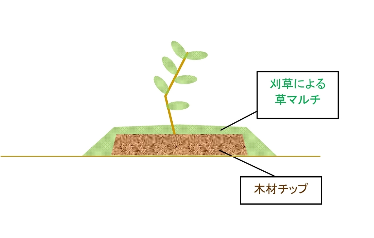 有機マルチの模式図