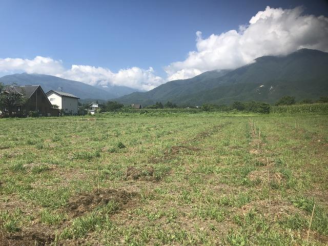 農地の画像