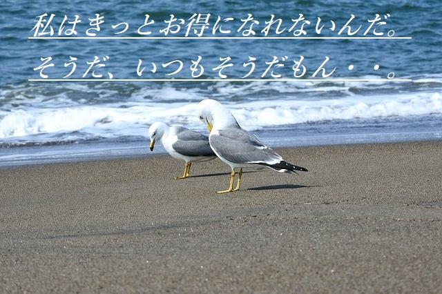 f:id:tuieoyuc23:20200424163442j:plain