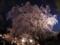 六義園の枝垂れ桜と月