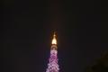 夏の大三角に包まれる東京タワー(女性に対する暴力根絶のシンボルで