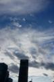 東京タワーと環天頂アーク  2014/9/5