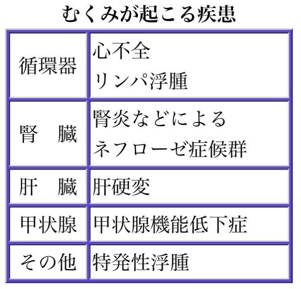 f:id:tujibee:20190809130022j:plain:w350:left