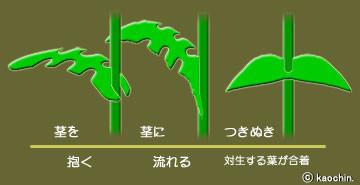 f:id:tujibee:20210517102120j:plain:w450:left