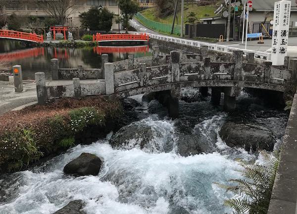 湧玉池から用水路というか川に流れる水